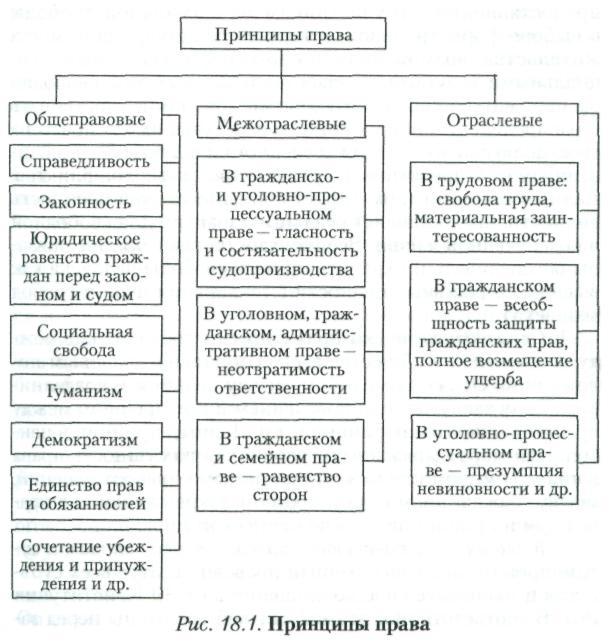 Правовые принципы схема